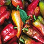 Scoville Rating (1-10): 3